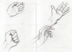 croquis mains