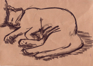 croquis chat03